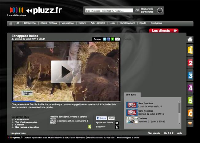 le site de pluzz.fr