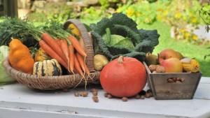 legumes-change-org